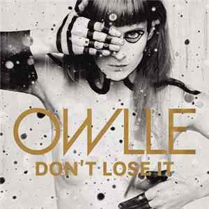 Owlle - Don't Lose It Album